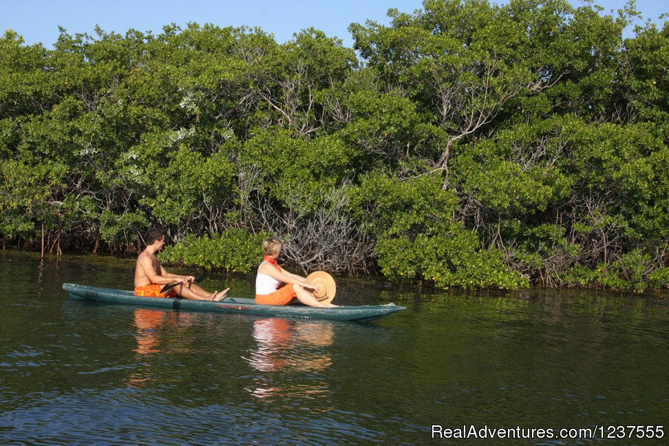 Mom and Dad kayak at their own pace. | Image #20/24 | Seabird Key, Private Island,  Sandy beach & boat