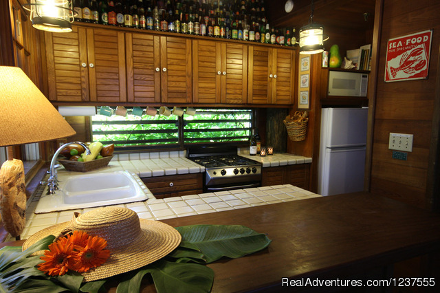 Seabird's galley is well equipped for preparing Island meals - Seabird Key, Private Island,  Sandy beach & boat