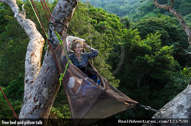 Tree bed and pillow talk - Tree Climbing and Hiking in the Amazon Rainforest
