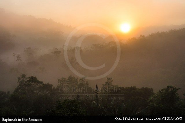 Daybreak in the Amazon - Tree Climbing and Hiking in the Amazon Rainforest