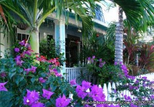 The Nassau House Orlando, Florida Bed & Breakfasts