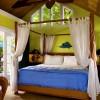 Tropical Inn, Gecko's Garden