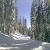 Snowmobiling Trips & Vacations