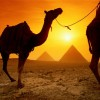 Daily Classical tour , Egypt Sight-Seeing Tours