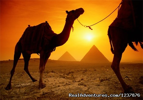 Egypt 2Day Tour