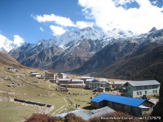 Langtang Valley Trekking - Trekking in Nepal, Nepal Trekking, Himalaya Trekki