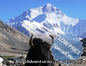 Small Group Expedition for 7 Days Mt. Everest Tour: Mt.Everest