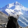 Small Group Expedition for 7 Days Mt. Everest Tour Lhasa, Tibet Sight-Seeing Tours