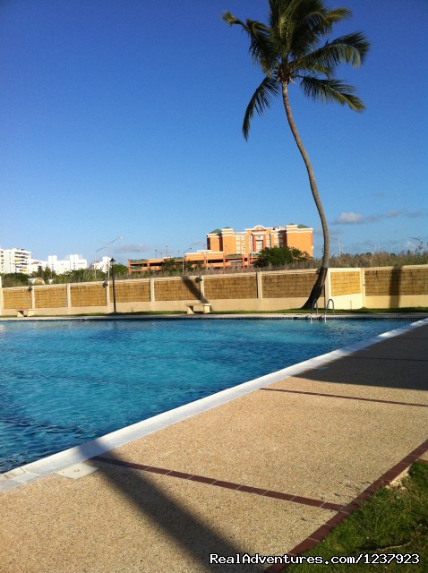 Pool - Beautiful Apt in Isla Verde-Free bus to beach