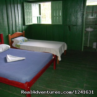 Beds - Manaus Jungle Hostel