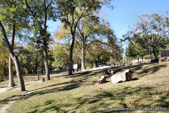 Guadalupe River Vacation Getaways New Braunfels Texas