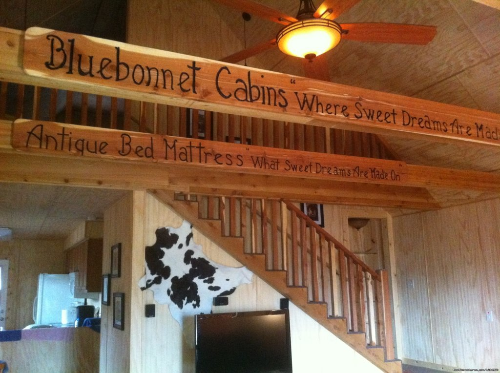 Bluebonnet Cabin is a cedar lodge on Curly Q Ranch Refuge in New Ulm, TX.  50 acres of woodland trails are available to enjoy.  The cabin can sleep up to 8, a perfect place for a family reunion or a getaway for one.