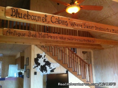Romantic Getaway at Bluebonnet Cabin