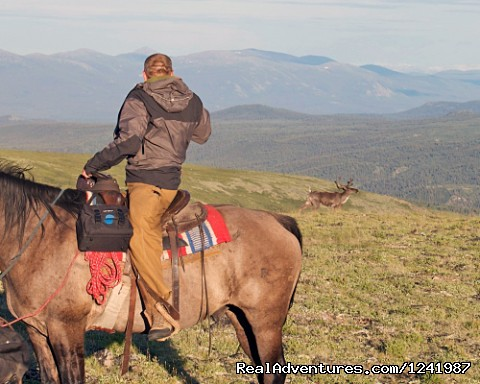 Wilderness Horseback Expedition in the Yukon of Canada (#19 of 25) - Wilderness Horseback adventure in the  Yukon