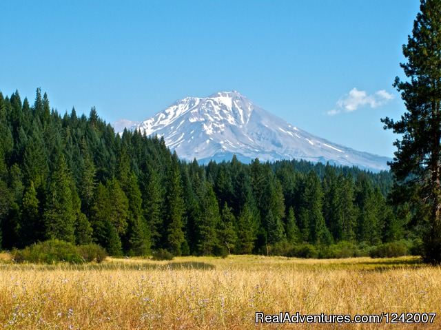 Image #4 of 5 - 34th Annual Mount Shasta Retreat