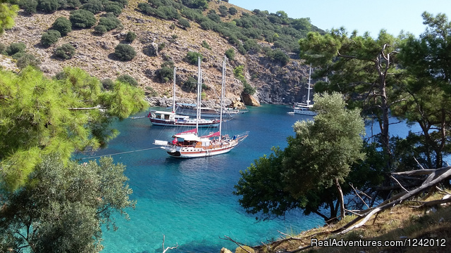 - Yoga  Cruise Turkey Holidays