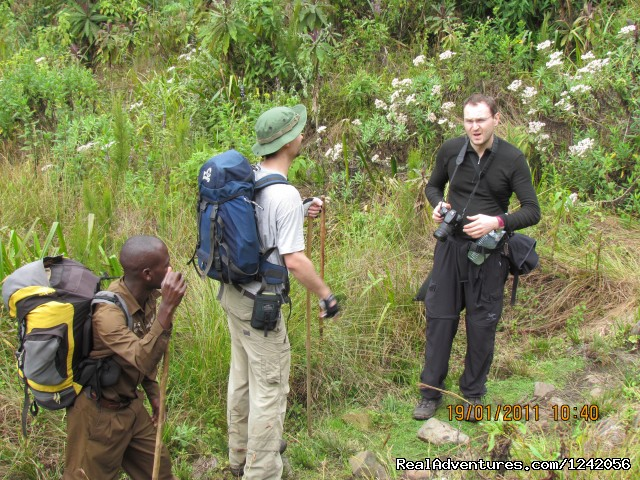 Rwenzori - Mountain Expedition - Trek the Rwenzoris 5109m high (the alps of Africa)