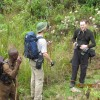 Rwenzori - Mountain Expedition