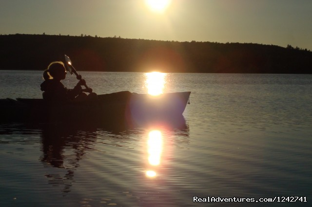 Southwest facing sunsets - View Northern Maine's Boreal Species