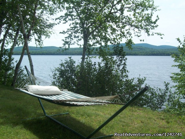 Relaxing - View Northern Maine's Boreal Species