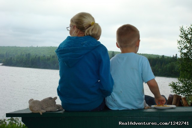 Family - View Northern Maine's Boreal Species