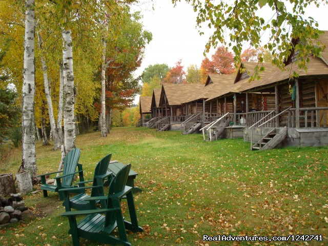 Authentic log cabin accommodations - View Northern Maine's Boreal Species