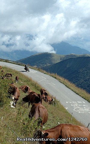 - Alpine Adventure West with 7 Nights in France
