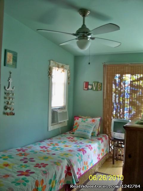 - NJ Shore House, Walk To All, Pool, Pets Ok