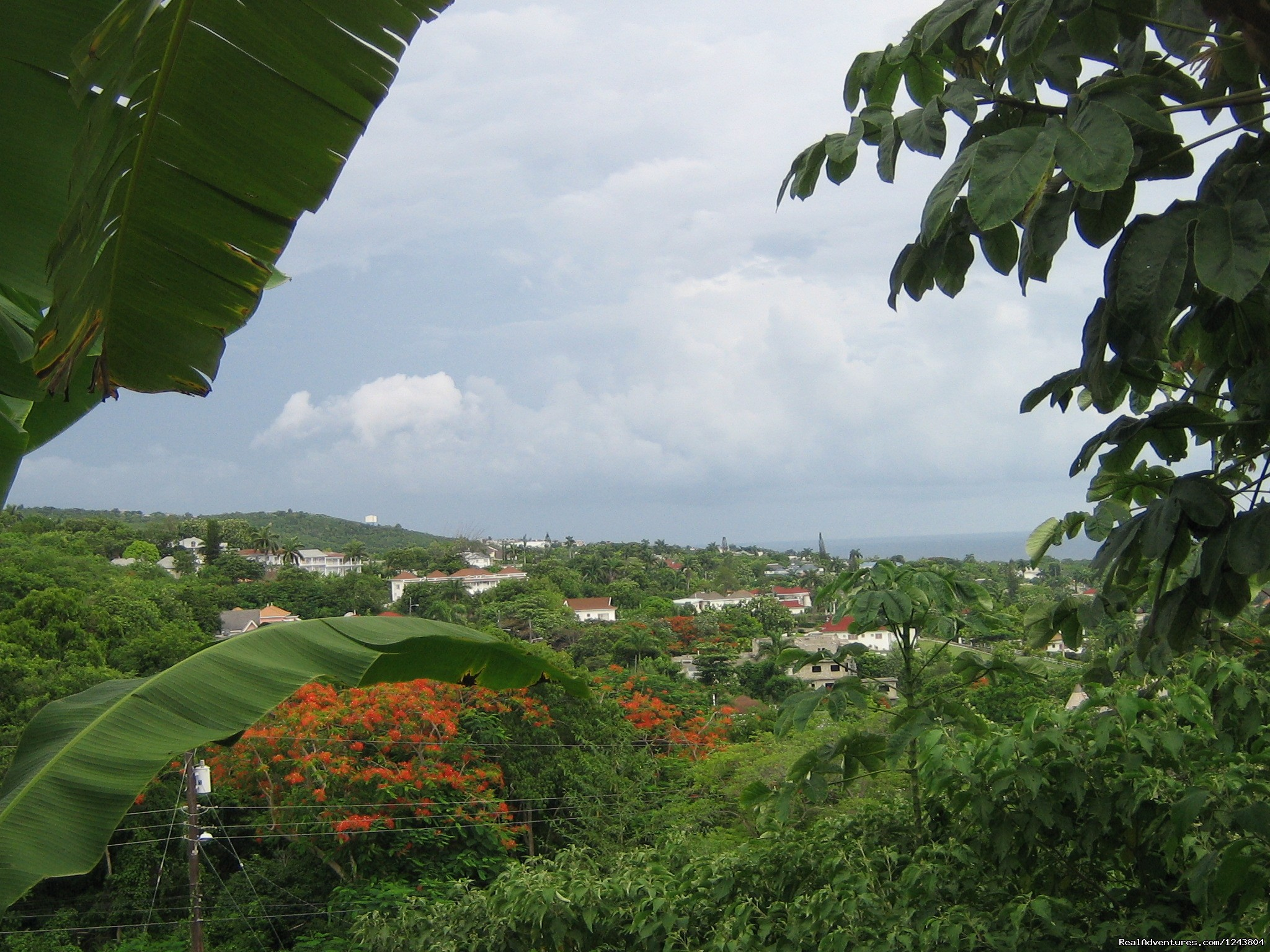 View overlooking the parish  | Image #10/18 | Welcome To The Villa Roma Located In Montego Bay