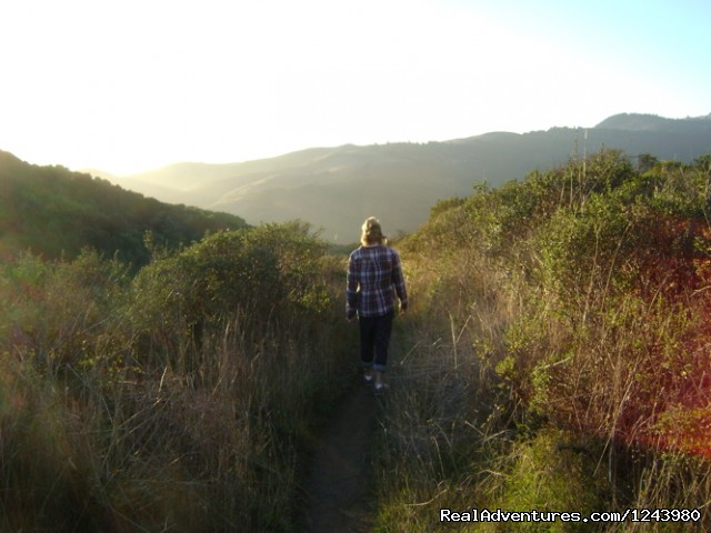 Trail at Sunset - Inn To Inn Treks Along San Francisco Coast