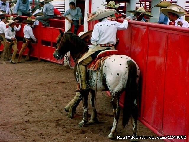 Image #2 of 26 - Rancho Las Cascadas