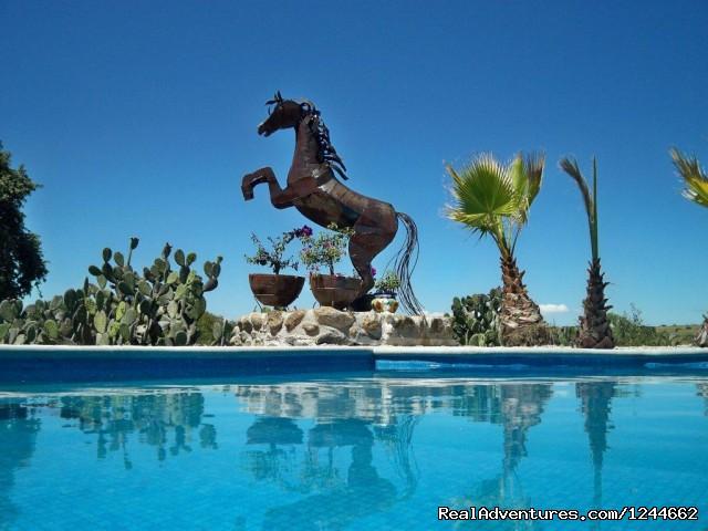 Rancho Las Cascadas