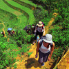 Great trekking and homestay in Sapa, Vietnam Lao Cai, Viet Nam Hiking & Trekking