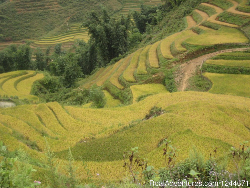 Family Adventures Trip in Vietnam | Image #9/10 | Great Family Adventures Trip in Vietnam