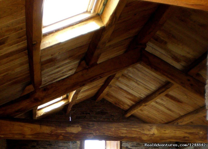 Chestnut wood exposed ceilings