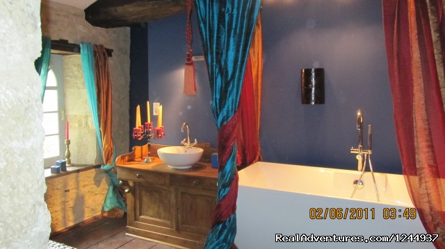 Master bedroom ensuite bath/shower room - Charming chateau/mill on river nr Bordeaux