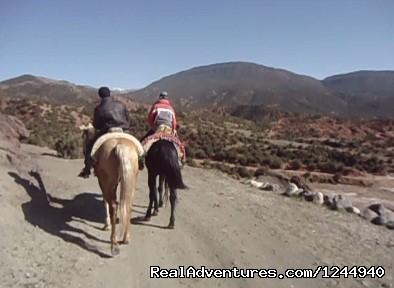 Horse riding asni valley (#2 of 5) - Horseback riding in the Atlas Mountains