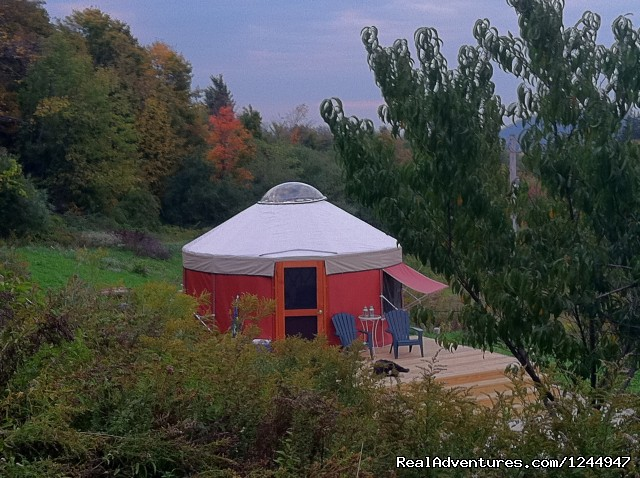 Yurt for Rent- Private Nature Retreat Vacation Rentals Waterville, New York