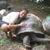 Explore the Tortoise in Zanzibar