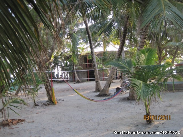 The volleyball court on the island - Diving on remote Caribbean island in Belize