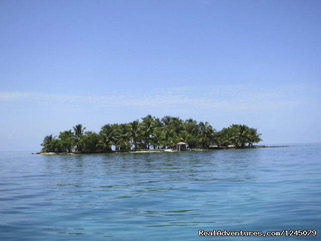 Image #5 of 17 - Diving on remote Caribbean island in Belize