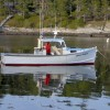 Our Lobster Boat  F/V Mindchanger