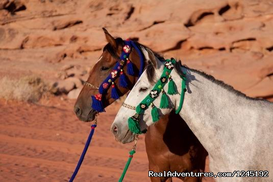 Horseriding in Wadi Rum Desert with Arabian horses
