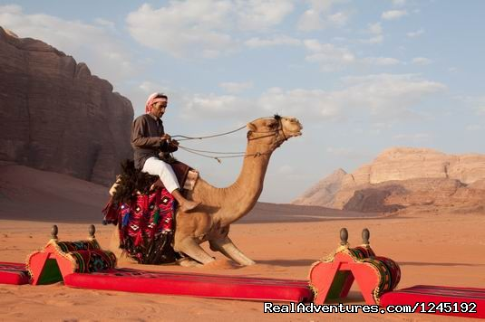 Badia Tours & Stables - Lunch camp with camel (#13 of 25) - Horseriding in Wadi Rum Desert with Arabian horses