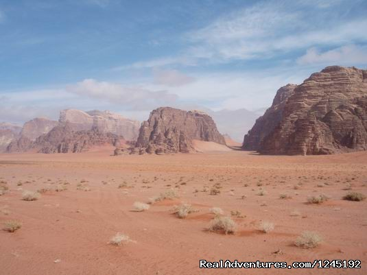 Badia Tours & Stables - Desert scenery (#15 of 25) - Horseriding in Wadi Rum Desert with Arabian horses