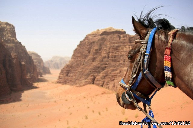 Badia Tours & Stables - Desert scenery (#23 of 25) - Horseriding in Wadi Rum Desert with Arabian horses