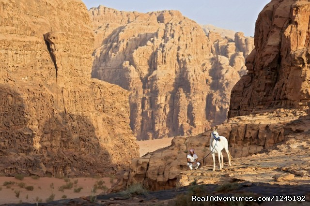 Badia Tours & Stables - Sunrise in desert - Horseriding in Wadi Rum Desert with Arabian horses