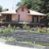 Enjoy  Freash Air at Chail,Shimla Himachal Pardesh Chail, India Bed & Breakfasts
