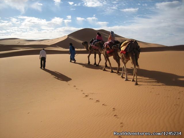 Camel Trekking -Merzouga- Erg chebbi sand dunes Camel Trekking