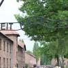 Auschwitz - Birkenau Memorial and Museum